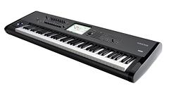 gold coast backline keyboards for hire. Black Bedroom Furniture Sets. Home Design Ideas